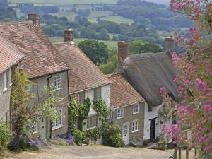 Gold Hill in June, Shaftesbury, Dorset, England, United Kingdom, Europe by Jean Brooks