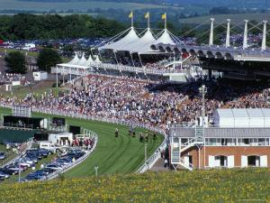 Horses Racing and Crowds, Goodwood Racecourse, West Sussex, England, United Kingdom by Jean Brooks