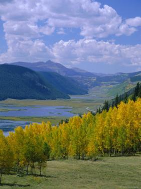 Rio Grande National Forest, Colorado, USA by Jean Brooks