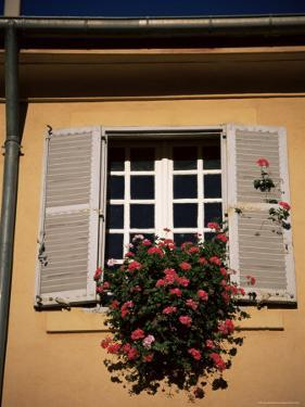 Shutters and Window, Aix En Provence, Provence, France by Jean Brooks