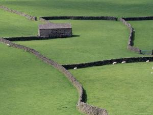 Stone Barn and Dry Stone Walls, Gunnerside, Swaledale, Yorkshire, England, United Kingdom by Jean Brooks