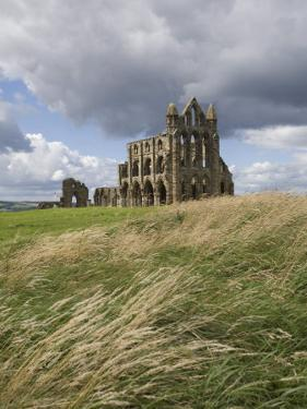 Whitby Abbey, Yorkshire, England, United Kingdom, Europe by Jean Brooks