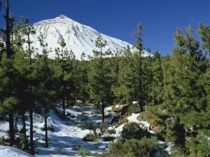 Winter Scene, Mount Teide, Tenerife, Canary Islands, Spain, Europe by Jean Brooks