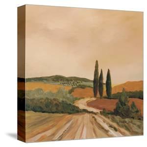 Shady Tuscan Fields by Jean Clark