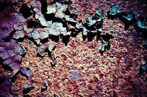 Purple Rust Up Close I by Jean-François Dupuis