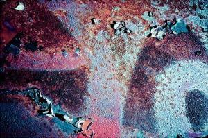 Purple Rust Up Close II by Jean-François Dupuis