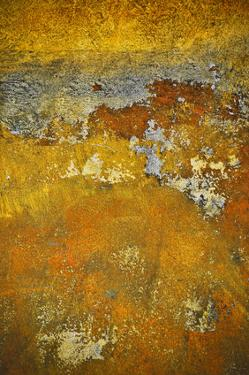 Rusty Look III by Jean-François Dupuis
