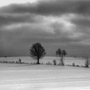 Winter Landscape I by Jean-François Dupuis