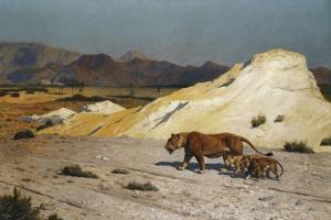 Lioness and Cubs; Lionne Et Lioceaux by Jean Leon Gerome