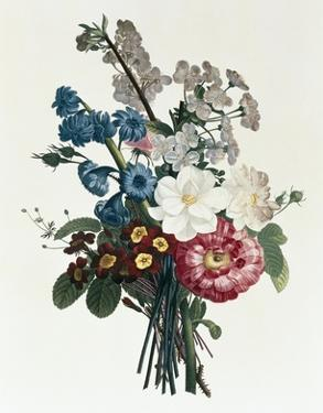 Bouquet of Camellia and Auricula by Jean Louis Prevost