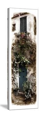 Doorway With Flowers by Jean Onesti