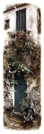 Doorway with Flowers