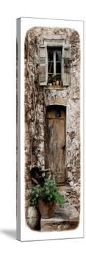 Doorway With Vines by Jean Onesti
