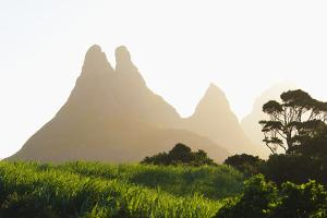 Sugar Cane Plantation and the Mamelles Peaks by Jean-Pierre Pieuchot