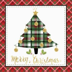 Plaid Christmas 2 by Jean Plout