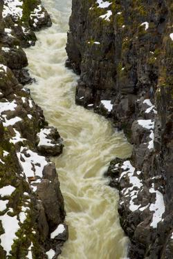 Yellowish Water Flowing Through a Snow-Dusted Gorge by Jed Weingarten