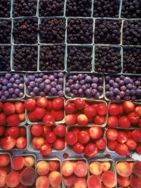Overview of Fruit in Cartons by Jeff Friedman