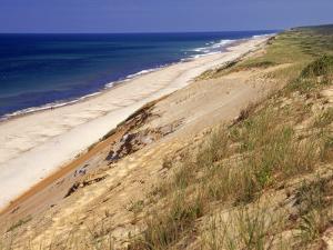 Beach, Cape Cod, MA by Jeff Greenberg