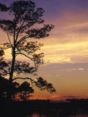 Cotton Bayou at Sunset, Orange Beach, AL by Jeff Greenberg