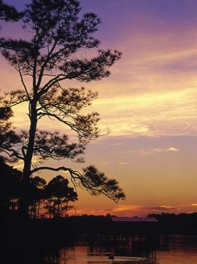 Cotton Bayou at Sunset by Jeff Greenberg