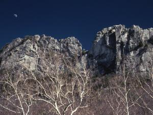 Seneca Rocks State Park, WV by Jeff Greenberg