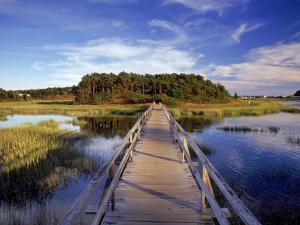 Uncle Tim's Bridge, Wellfleet, Cape Cod, MA by Jeff Greenberg