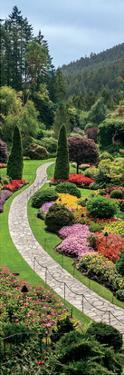 Butchart Gardens, Victoria, British Columbia by Jeff Maihara