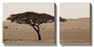 Serengeti Horizons I by Jeff Maihara