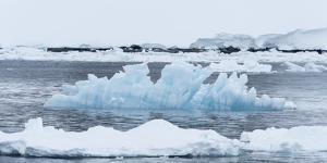 Blue Ice Floats in Neumayer Channel, Antarctica by Jeff Mauritzen