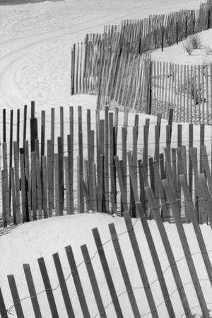 Beach Fencing 1 A by Jeff Pica