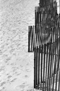 Beach Fencing 2 by Jeff Pica