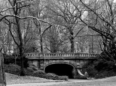 Central Park Bridge 2 by Jeff Pica
