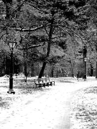 Central Park Snowy Scene 2 by Jeff Pica