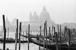 Santa Maria Della Salute, Venezia, Italia by Jeff Pica