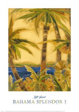 Bahama Splendor I by Jeff Surret