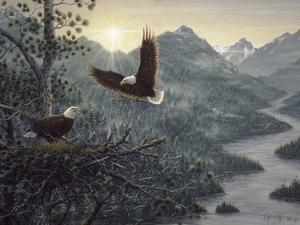 Eagles Nest by Jeff Tift