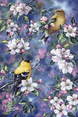 Gold Finch and Blossoms by Jeff Tift