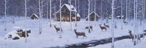 Holiday Silence by Jeff Tift