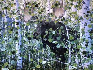 Moose by Jeff Tift
