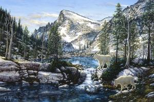 Summer in the Enchantments by Jeff Tift