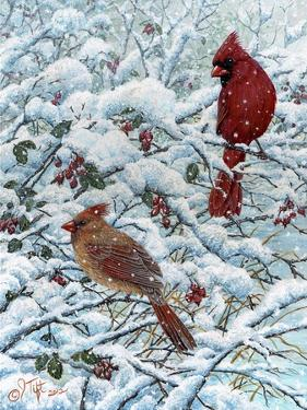 Winter Cardinal Painting by Jeff Tift