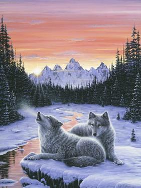 Winter's Dawn by Jeff Tift