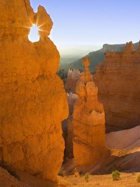 Thor's Hammer in Bryce Canyon National Park by Jeff Vanuga