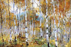 Fall Magic by Jeffrey Bradshaw