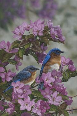 Bluebirds and Spring Blossoms by Jeffrey Hoff