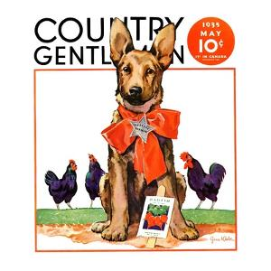 """""""Guarding the Garden,"""" Country Gentleman Cover, May 1, 1935 by Jene Klebe"""