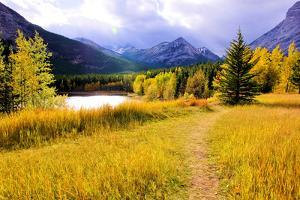Autumn Landscape by Jeni Foto