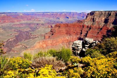 Colorful Grand Canyon by Jeni Foto