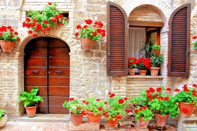 Italian Home with Colorful Flowers by Jeni Foto