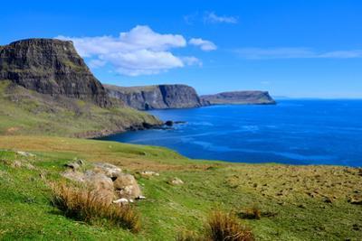 Scotland Coast by Jeni Foto